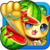 Fruit Cat DreamInc.