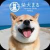 【柴犬まる】無料きせかえ-かわいい壁紙・アイコン [+]HOME by Ateam