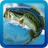 釣りフィーバー GAME MANIAC RP