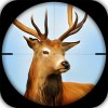 Sniper Game Deer Hunting i6Games
