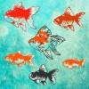 癒しの金魚育成ゲーム mozukuapp