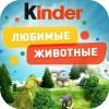"""Kinder """"Любимые животные"""" TRAFFIC"""