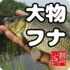 大物フナ 淡水ウキ釣りゲーム(日本版) NETSKY