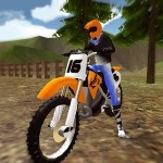 Offroad Stunt Bike Simulator i6Games