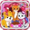 Cats and Dogs Grooming Salon bwebmedia