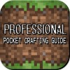 Crafting Guide Professional Edmundo R. Lemaire