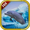 Escape Games Antarctic Dolphin Escape Game Studio