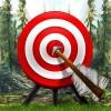 Target – Archery Games Integer Games