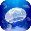 治癒系海蜇養成遊戲 mozukuapp