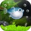 ぼくのフグさん水族館 【無料でかわいい育成ゲーム】 ESC-APE by SEEC