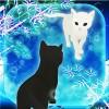 脱出ゲーム 猫と七夕さんぽ litegame