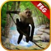 Escape Game Forest Survival Escape Game Studio