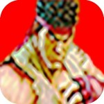 ストリートファイティングII Arcade Classic Game
