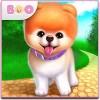 ポンちゃん – 世界で最もかわいい犬 Coco Play By TabTale