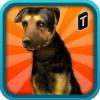 Street Dog Simulator 3D Tapinator, Inc. (Ticker: TAPM)