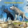 Wolves of the Forest WildFoot Games