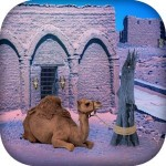 Escape Game – Desert Camel Escape Game Studio