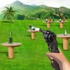 Bottle 3D Shooting Expert iGames Entertainment