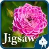 花のジグソーパズル Titan Inc