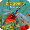 Dragonfly Simulator WildFoot Games