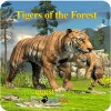 Tigers of the Forest WildFoot Games