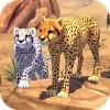 Cheetah Family Sim Area730