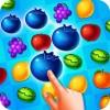 フルーツスプラッシュフィーバー GameFocus