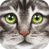 Ultimate Cat Simulator Gluten Free Games