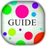 Guide for Agar.io Марина Гунина