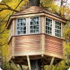 Can You Escape Tree House Odd1Apps