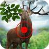 ハンター の 野生 鹿 3d GamesTree