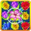 Flower Storm TALHASTUDIO