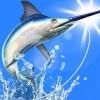 僕の釣り物語 王道の本格釣りゲーム 世界周遊フィッシング BTDSTUDIO