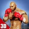 3Dボクシング – 実際のパンチ Integer Games