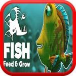 魚を育てて成長する feed fish and grow