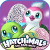 Hatchimal Egg Surprise TANIAInc