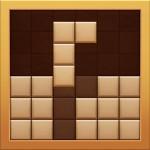 Board Block Puzzle T.Societe