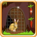 Rabbit Escape from Cage Saravanan Manickam