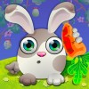 Rabbit Tap Hop Best Slots Bingo Poker Casino Games