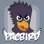 Pacbird Bram Vos