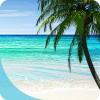 Perfect Beach VR nDreams LTD