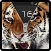 ジッパーロック画面の虎 Technology expertise