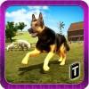 Shepherd Dog Simulator 3D Tapinator, Inc. (Ticker: TAPM)