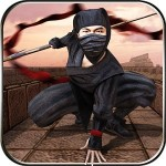 Ninja Warrior Survival Fight Vital Games Production