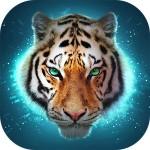 The Tiger Swift Apps LTD