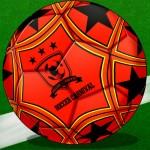 サッカーカーニバル Ragoo