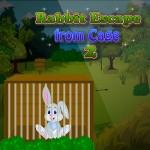 Rabbit Escape from Cage 2 Saravanan Manickam